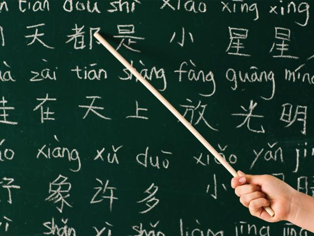 FluentU - Language Immersion Online | Learn a Language ...