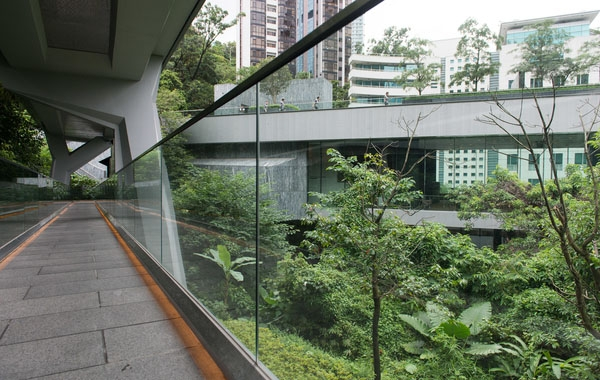 Connecting the Entry Pavilion to the Heritage Compound is the double-decked bridge. The upper deck is named as the Yasumoto Bridge while the lower deck is the Fruit Bats Bridge. (Asia Society Hong Kong Center)