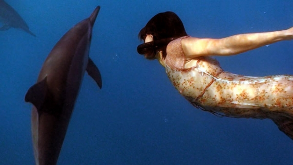 Still from 'Together: Dancing with Spinner Dolphins.' (Dolphin Dance Project)