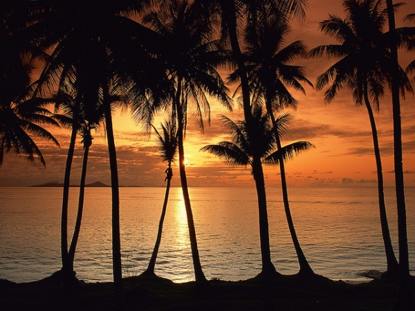The sun sets behind a row of palm trees in Micronesia on September 17, 2012. (myheimu/Flickr)