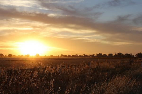The setting sun casts a golden glow over open fields in Echuca, Australia on January 10, 2013. (JMillott/Flickr)