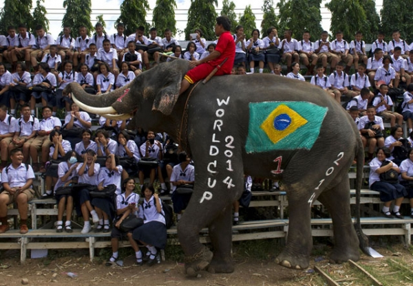An elephant plays with students during a friendly match in honor of the 2014 FIFA World Cup at an elephant camp in Ayutthaya province, Thailand on June 9, 2014. (Pornchai Kittiwongsakul/AFP/Getty Images)