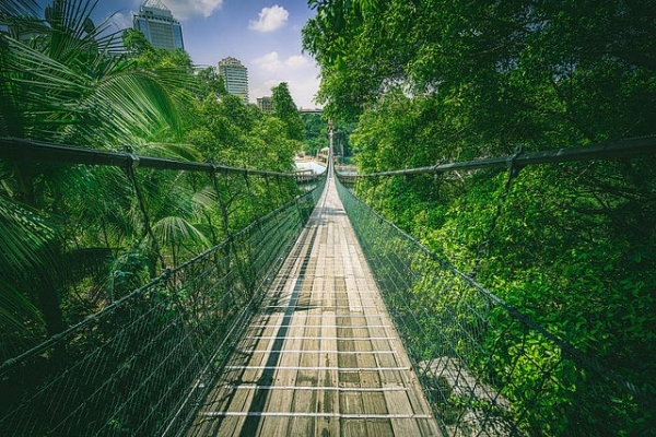 Sunway Lagoon Suspension Bridge surrounded by lush green trees in Kuala Lumpur, Malaysia on July 28, 2015. (Rob M/Flickr)
