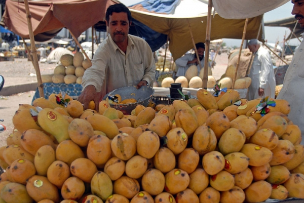 A Pakistani fruit vendor sells mangoes in in Islamabad on July 4, 2009. Pakistan is the 5th-largest producer and 3rd-largest exporter of mangoes in the world. (Sajjad Qayyum/AFP/Getty Images)