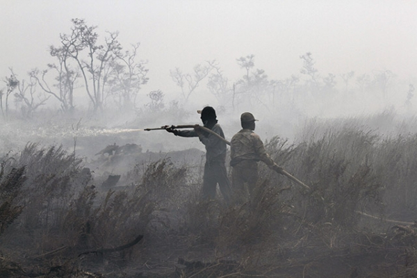 Indonesian firefighters work to extinguish a peatland fire in South Sumatra on September 11, 2015. (Abdul Qodir/AFP/Getty Images)