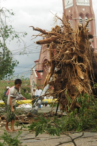 A resident walks near a tree uprooted during cyclone Nargis in Yangon on May 4, 2008. (Khin Maung Win/AFP/Getty Images)
