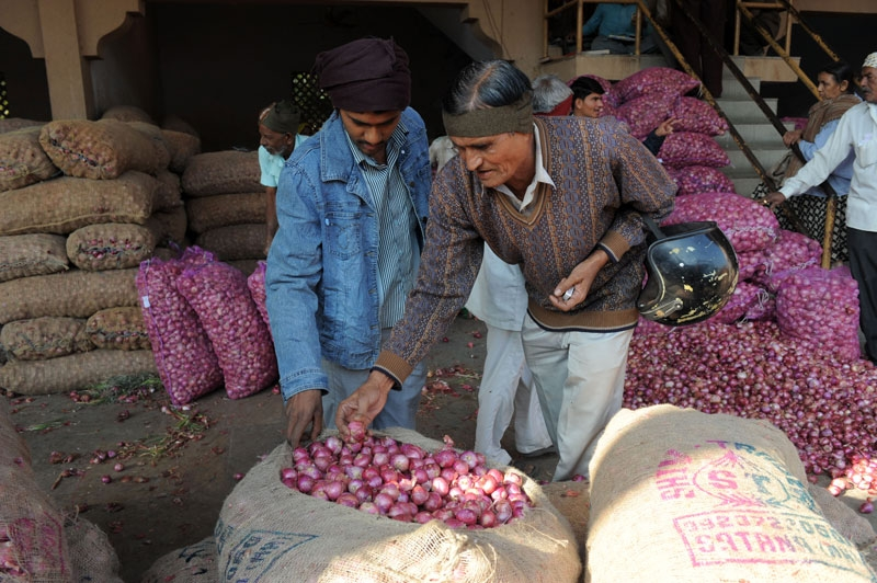 Indian traders check the quality of onions at the Agricultural Produce Market Committee (APMC) in Ahmedabad on December 21, 2010. India suspended exports of onions, a key food staple, after prices of the vegetable soared, adding to the government's inflation woes. (Sam Panthaky/AFP/Getty Images)