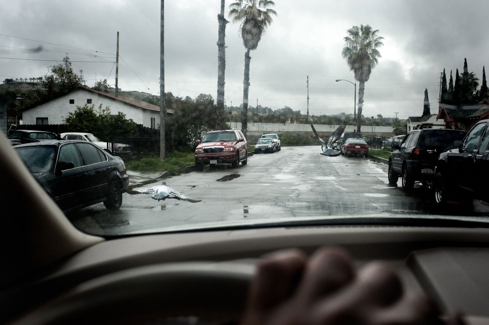"Cambodian neighborhood adjacent to the ""Ditch,"" a focal point of gang violence, Long Beach, Calif. (Pete Pin)"