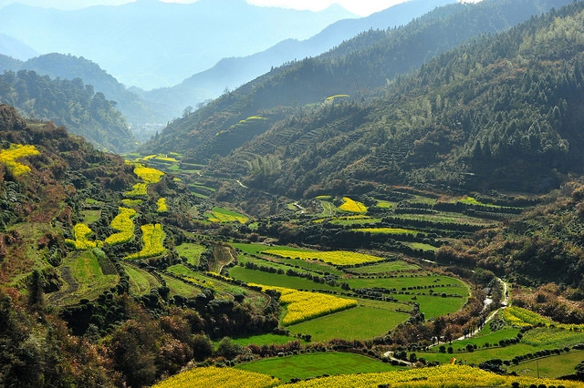 Photo of the Day: A Lush Green Valley in China   Asia Society