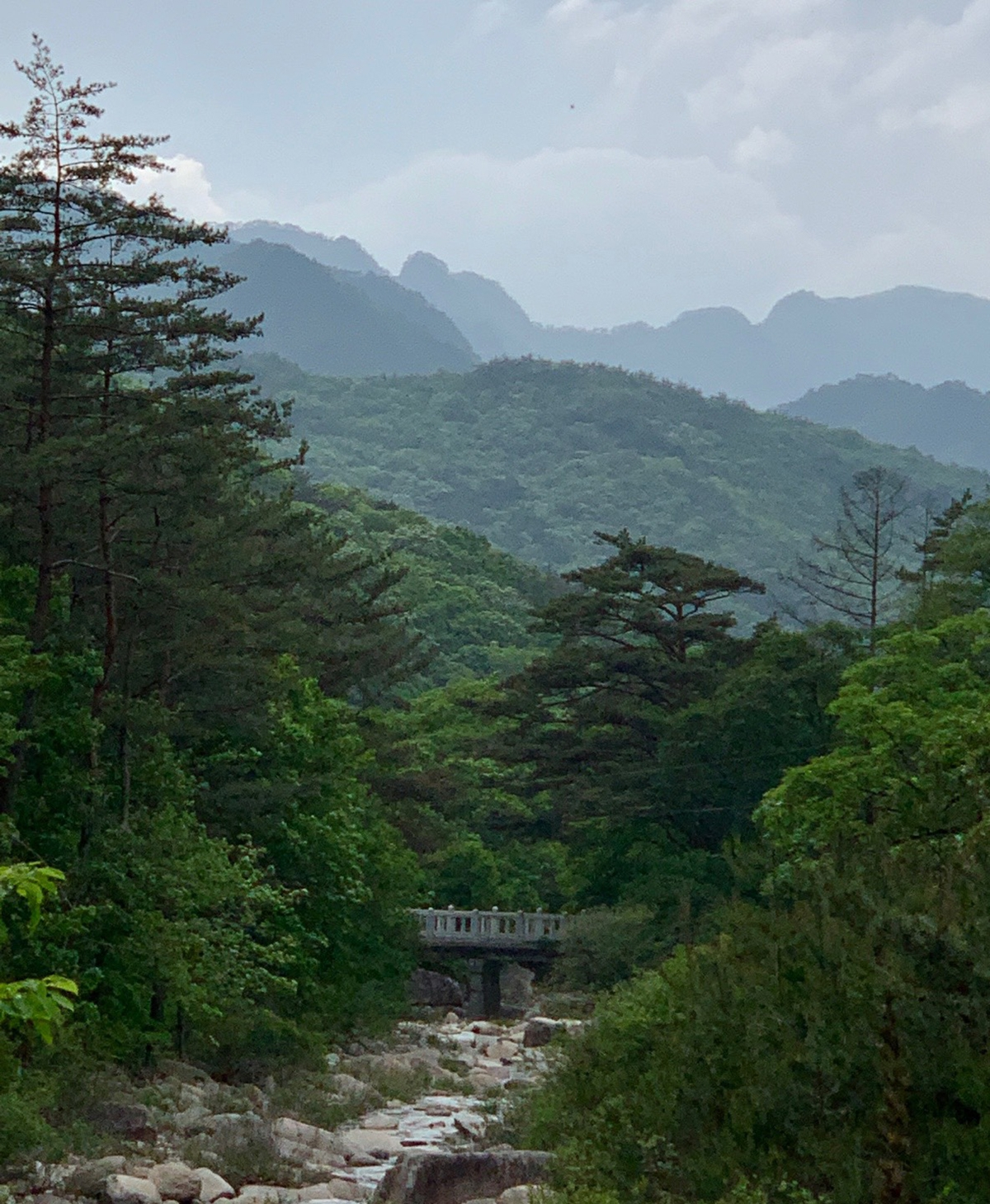 Photograph of Wolak National Park by Kimsooja