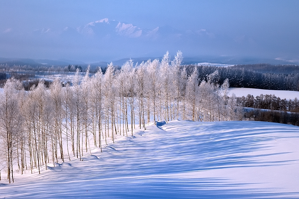 """Blue Shadows of a Hill."" (Kent Shiraishi)"
