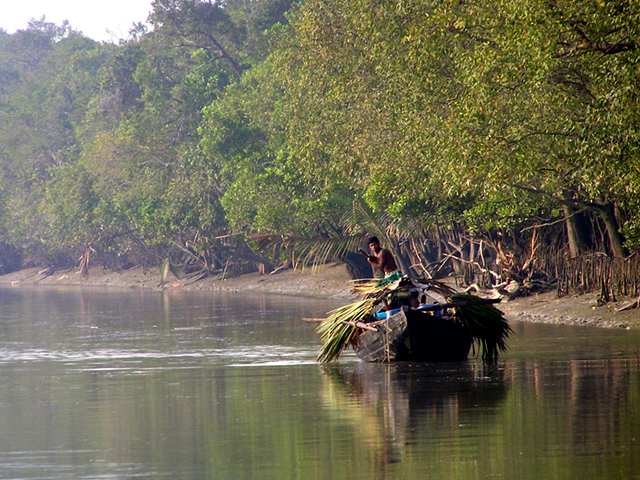 The soft, malleable coast of Bangladesh is vulnerable to rising seas. (Md. Asif Ali/Flickr)
