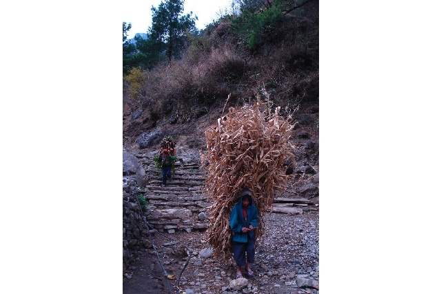 Child labour Nepal (most uncool/Flickr)