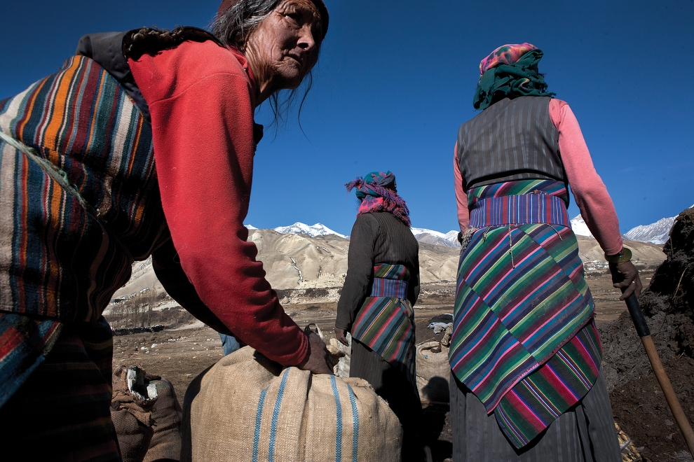 Villagers of Phuwa load bags of fertilizer onto horses to be taken to the fields. (Taylor Weidman)