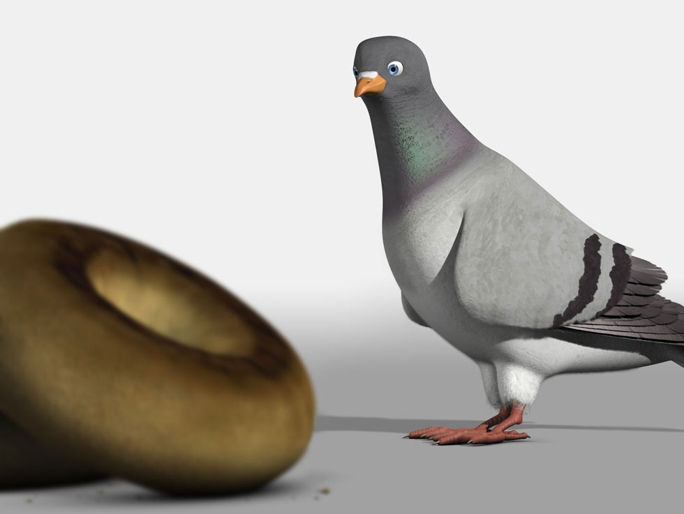 Pigeon: Impossible. Dir: Lucas Martell, USA.