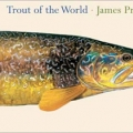 Trout of the world