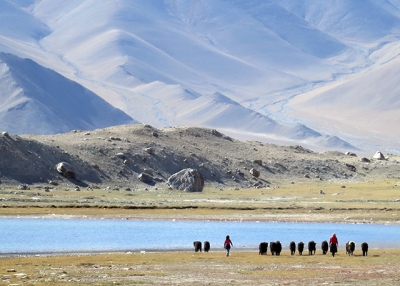 Mother and daughter, Kyrgyz nomads, herd yaks at Lake Karakul, Xinjiang Province, China in September 2013. (Gaik Ping Ooi)