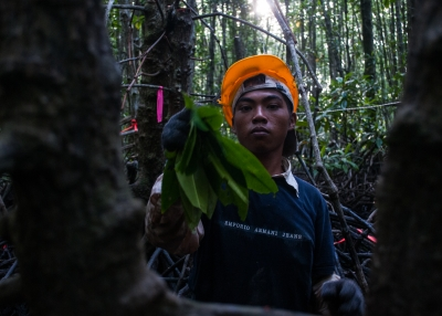 Indonesia's climate refugees