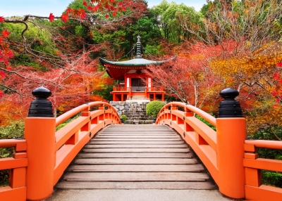 Introduction to Japanese Language and Culture