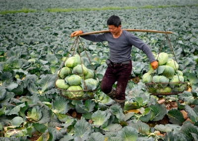 Chinese farmers have largely been left out of the country's economic miracle.