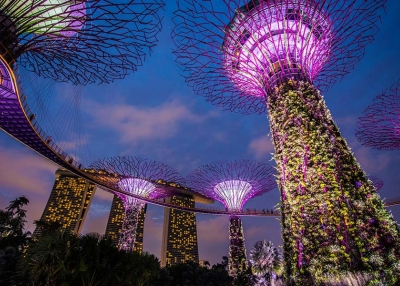 Disruptive Asia Launch - Singapore Supertrees - AdobeStock_95384140