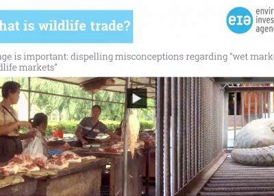 Will Covid-19 Tame Wildlife Trade?