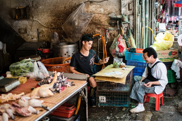 Two workers take a break to play cards at the meat market on May 26, 2012 in Chungli City, Taiwan. (macabrephotographer/Flickr)