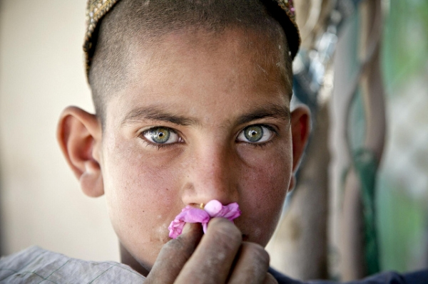 A young Afghan boy smells a flower in the Oshay Bazaar, Uruzgan province, Afghanistan, April 26, 2011. (DVIDSHUB/Flickr)