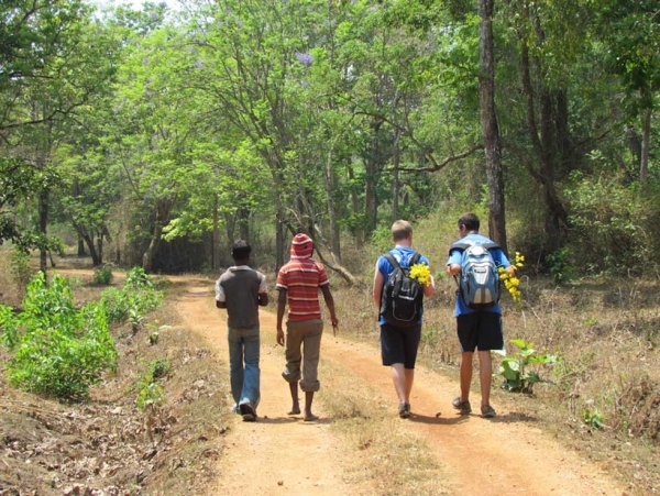 Karnataka: American boys walking with the village students, learning about the mahout way of life. (Rachel Marra)
