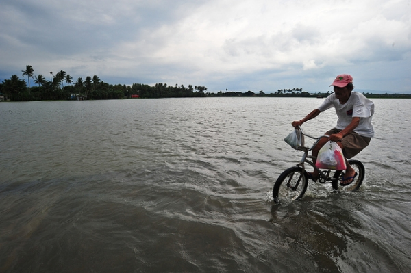 A man bikes through a flooded field in Laguna, Philippines on August 10, 2012. (IRRI Images/Flickr)