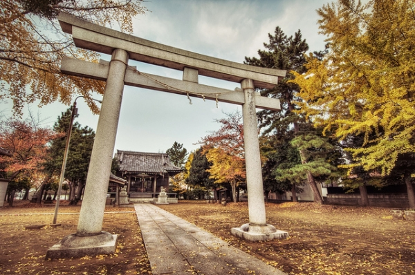 The leaves around this torii shrine change with the season in Matsudo, Japan on November 15, 2012. (lestaylorphoto/Flickr)