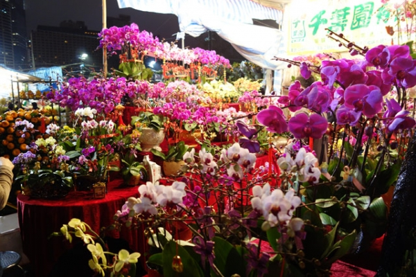 A vibrant plethora of flowers at the Lunar New Year Fair at Victoria Park in Hong Kong on February 7, 2013. (Wendy Tang/Asia Society)