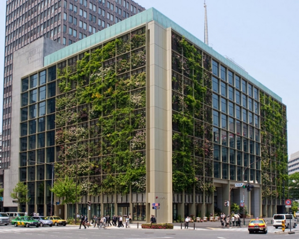 The exterior of Pasona Group's building in downtown Tokyo flowers with several varieties of citrus trees, displaying just a portion of the 200 species of fruits and vegetables that grow inside. (Kono Designs)