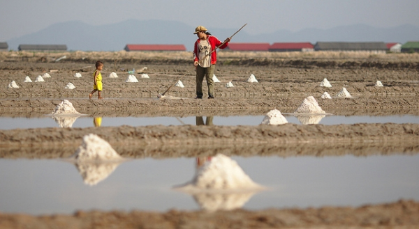 A worker laboriously harvests salt from the salt ponds near Kampot, Cambodia on January 14, 2014. (Maciej Hrynczyszyn/ Flickr)