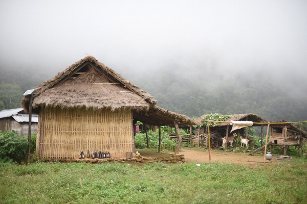 The village of Rangcha, comprised of 50 agricultural households, are using their learning grounds to conserve tropical fruit diversity and heirloom staple crops such as Kagune and black rice. (Nirman Shrestha)