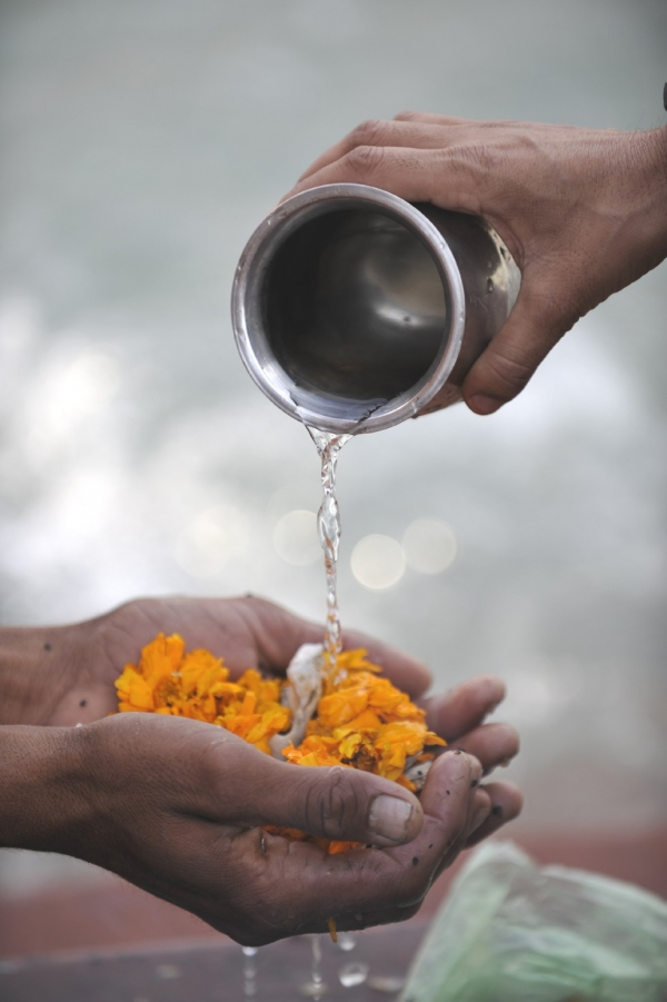 Flowers used as a puja (prayer) offering in Varanasi. (Tom Carter)