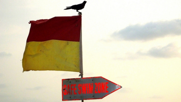 A bird stands on the warning flag on the beach in Goa, India on May 24, 2014. (Rajib Ghosh/Flickr)