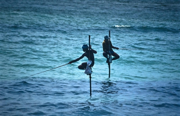 Two men fish on stilts with great skill and courage in Uva, Sri Lanka on May 10, 2015. (Bachellier Christian/Flickr)