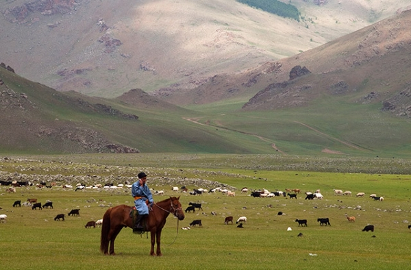 A shepherd in Arhangay, Mongolia chats on a cell phone while tending to his herd. (Flickr/Evgeni Zotov)