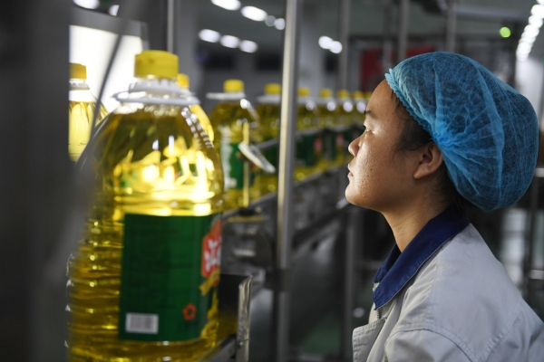 A Chinese worker examines a bottle of soybean oil