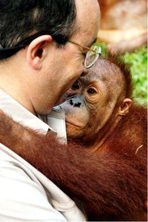 Amory Lovins in Kalimantan, Indonesian Borneo with an orangutan. (Peter Stranger)