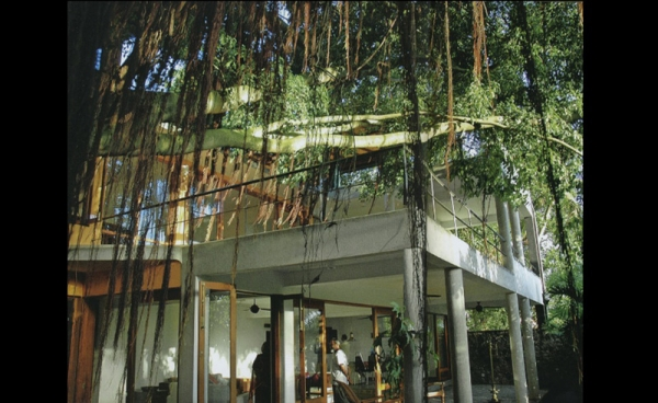 The House Beneath The Banyan Tree For Captain And Mrs
