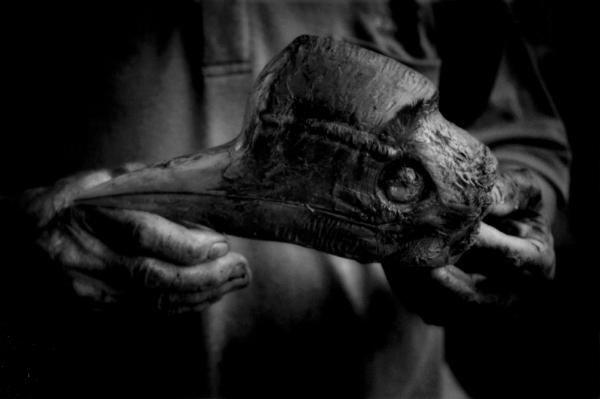 A Kelabit man holds the skull of a helmeted hornbill, an endangered species, freshly killed by a Penan hunter.  (James Whitlow Delano)