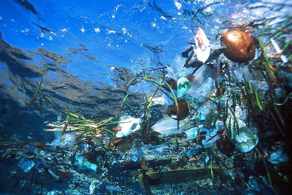 Trash in the Great Pacific. (cesar harada/Flickr)