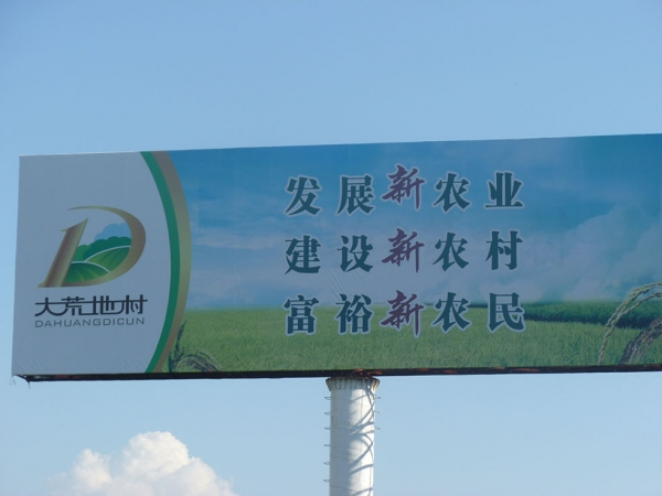 "An Eastern Fortune Rice billboard promises to ""Develop New Agriculture, Build a New Countryside, Enrich the New Farmer."" (Michael Meyer)"