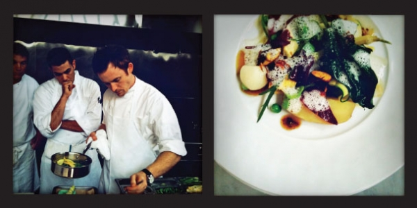 $250 Gift Certificate to Saison: Saison is a two-Michelin starred restaurant in the San Francisco's SOMA district. Offering one menu nightly, Saison's ingredients are local and wild, including from the restaurant's own garden. Donated by Mark Bright, Co-Owner and Sommelier at Saison.