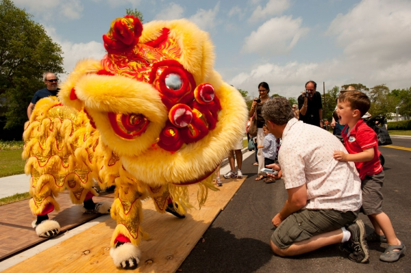 Lee's Golden Dragon opens Sunday's festivities with a thrilling Chinese Lion Dance (Jeff Fantich).