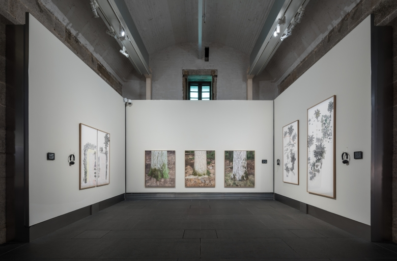 A gallery chamber with a painting on each flanking side wall, and three paintings of trees in the center wall.
