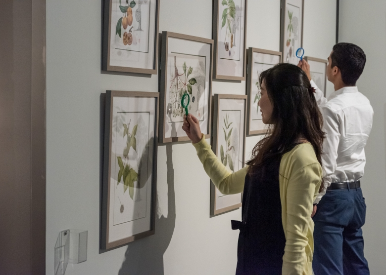 A man and a woman looking at detailed plant illustrations with magnifying glass.