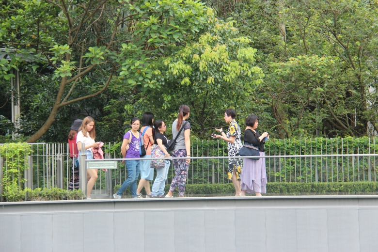Figures walking across a bridge covered in trees.